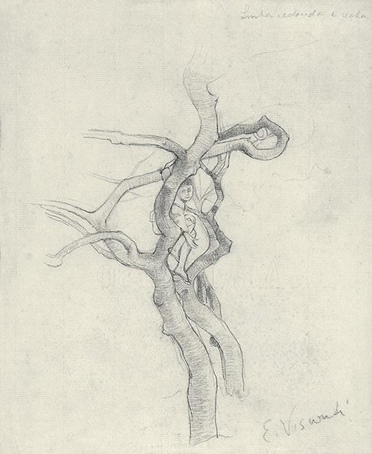 MENINO NA ÁRVORE - GRAFITE S/ PAPEL - 26,0 x 21,5 cm - c.1895 - COLEÇÃO PARTICULAR