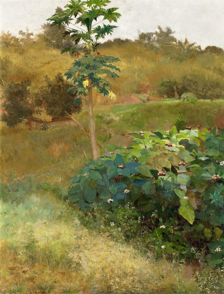 MAMOEIRO - OST - 92 x 73 cm - 1889 - MUSEU NACIONAL DE BELAS ARTES - MNBA - RIO DE JANEIRO/RJ