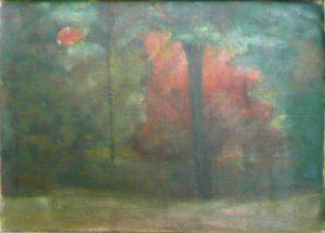 ARVOREDO - OST - 18 x 25 cm - c.1905 - COLEÇÃO PARTICULAR