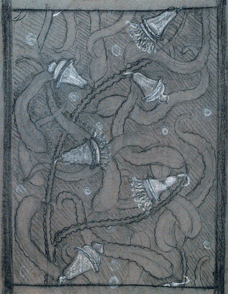 CAMPÂNULAS - ESTUDO PARA TECIDO - CARVÃO E GIZ/PAPEL - 60 x 47 cm - c.1901 - COLEÇÃO PARTICULAR