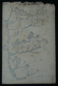 ARBUSTOS - CRAYON S/ PAPEL - 16,0 x 10,5 cm - 1900 - DESMEMBRADO DE UM CADERNO DE ANOTAÇÕES - COLEÇÃO PARTICULAR