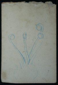 PISTILOS - LÁPIS DE COR S/ PAPEL - 16,0 x 10,5 cm - c.1902 - DESMEMBRADO DE UM CADERNO DE NOTAS - COLEÇÃO PARTICULAR